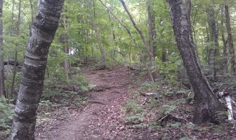 This hiking trail at Mt. Hosmer City Park in Lansing is an example of an outdoors tourist attraction Allamakee County residents say large frac sand mining operations could jeopardize.