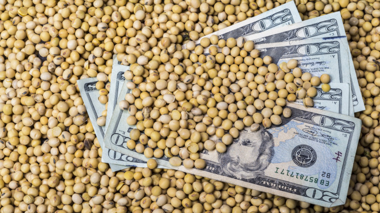 Agribusiness companies receive millions of dollars each year from state agencies and the federal government. The tax breaks, subsidies and grants they receive are in addition to the U.S. Department of Agriculture subsidies for farmers.