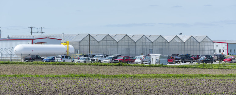 A Monsanto facility in Jerseyville, Ill., on May 19, 2015. Data show the St. Louis-based seed company has secured more USDA-petition approvals than any other company or institution.