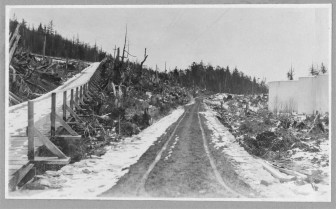 A plank road in Alaska, around 1916